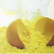 Желтки сухие яичные фото