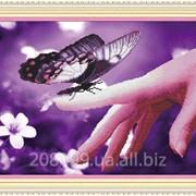 """Набор для рисования камнями """"Доверчивая бабочка"""" 80237 фото"""