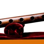 Обучение игре на музыкальном инструменте дудук фото