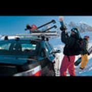 Аренда, прокат снаряжения для лыжной прогулки фото