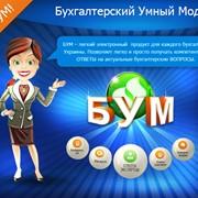 Бухгалтерский Умный Модуль, подсказка бухгалтерам фото