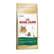 Сухой корм Royal Canin Kitten Maine Coon для котят мейн кунов, 2 кг фото