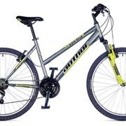 Велосипед Vectra 2015 фото