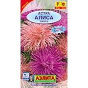 Семена цветов Астра Алиса, смесь фото