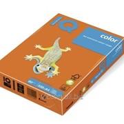 Бумага цветная iq color A4, 80г/м2, or43-оранжевый 500л. OR43-80 фото