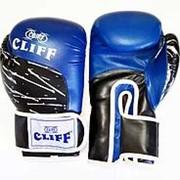 Перчатки боксерские PRO STAR (DX) синие, 10 OZ фото