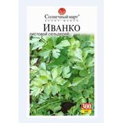 Семена листового сельдерея Иванко фото