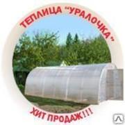 Каркас теплицы Уралочка 10х3х2 м фото
