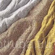 Дактилоскопический порошок магнитный ПМД-ЛС ТУ 479-002-43556328-2000 фото