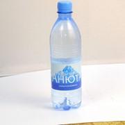 """Питьевая вода """"Анюта"""", 0,5 литра сильногазированная фото"""