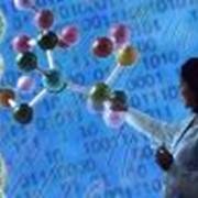 Полное иммунологическое обследование фото