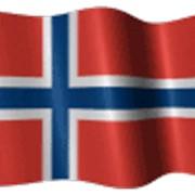 Флаги государственные, фирменные, расцвечивания, морские, вымпелы, знамёна фото