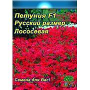 Цветы Петуния Лососевая Русский размер (15шт) фото