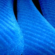 Плечики для одежды 42см , флокированные фото