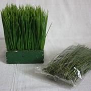 Трава искусственная (бутафория), упаковка фото