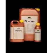 Флорон (Florone) фото