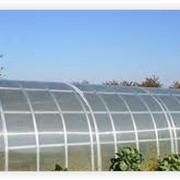 Теплицы 3х6 м из поликарбоната 4мм (10-ть лет) фото