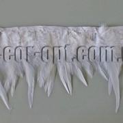 Перо-юбка белая 9-14см/48-50см 570422 фото