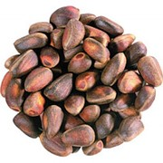 Кедровый орех, в скорлупе фото