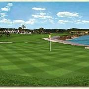 Уход, подготовка, обслуживание гольф-полей, гринов фото