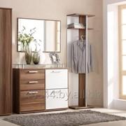 Наборы мебели для прихожей фото