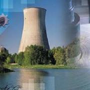 Экологическая безопасность и рациональное природопользование фото