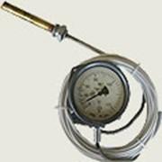 Термометр манометрический, конденсационный, показывающий ТКП-60С, ТКП-100С фото