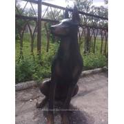 Скульптура Собака доберман фото