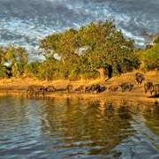 Групповой тур в ЮАР,Зимбабве, Ботсвану фото