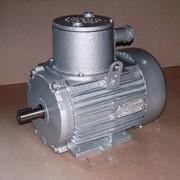 Электродвигатели асинхронные взрывозащищенные серии АИВР фото