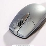 Мышь Oklick 151 M фото