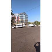 Лимузины без посредников. фото