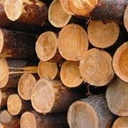 Рудстойка. Дерево, пиломатериалы. фото