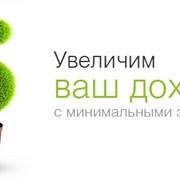 Создание и размещение сайта в каталоге allbiz фото
