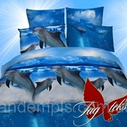 Комплект постельного белья двуспальный ранфорс Дельфины фото