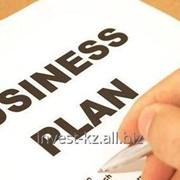 Подготовка бизнес-планов, Бизнес план для Фонда ДАМУ фото