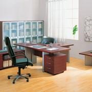 Мебель для руководителя Boss фото