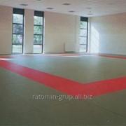 Татами для единоборств, борцовский ковёр, покрытие для спортзала. фото