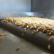 Подсушка сухофруктов и орехов фото