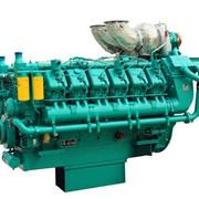 Двигатель TSS Diesel TDG 1665 12VTE фото