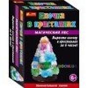 Набор для опытов Creative Елочка в кристаллах разноцветная 12138007Р фото