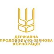 Публічне акціонерне товариство Державна Продовольчо-зернова корпорація України фото