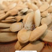 Семечки тыквы фото