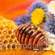 Мёд из лесного разнотравья фото