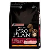 Корм для собак Pro Plan (Про План) Adult 14 кг, корм сухой для собак фото