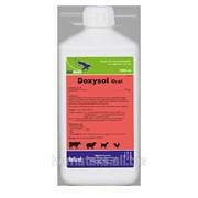 Доксисол орал (Doxysol Oral), Раствор для перорального применения фото
