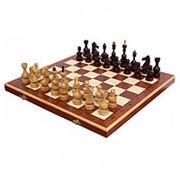 Шахматы Дебют Мадон фото