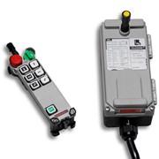 Telecrane Italia Silver Hoist F21-E1 промышленное радиоуправление фото