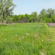 Продажа земельного участка в с.Триполье! фото