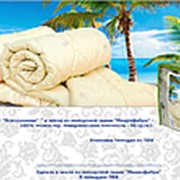 "Одеяло холофитекс ""Всесезонное"" 172х205 см (арт 323) фото"